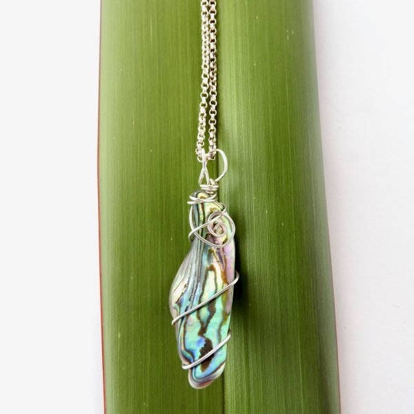 Product photo of curved long wedge paua shell necklace