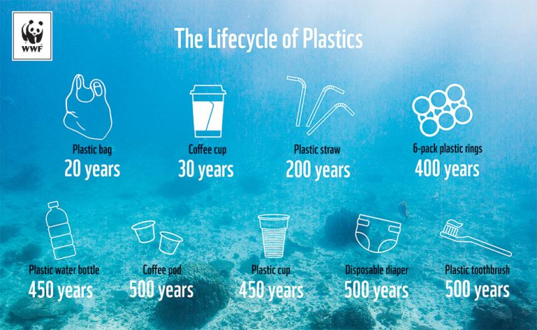 lifecycle of different types of plastics